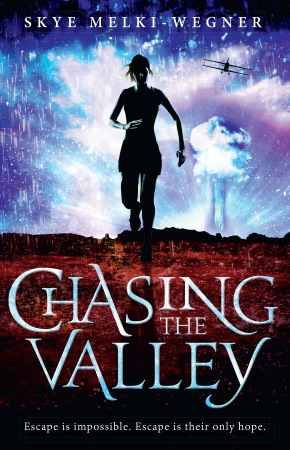 Book Cover for the Chasing the Valley Series